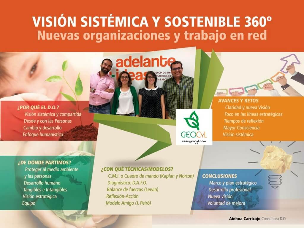 poster-final_tfm_consultoria-do_ainhoacarricajo-2